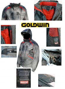 Goldwin gray